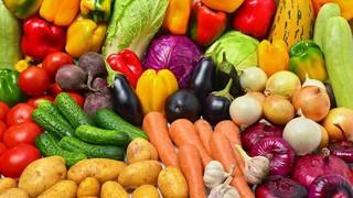 Республика Казахстан вопреки пандемии увеличила экспорт сельхозпродукции