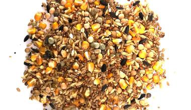 Выращивание кормов для птицы