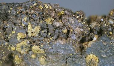 Добыча и переработка золотоносных руд месторождения Шойымбай